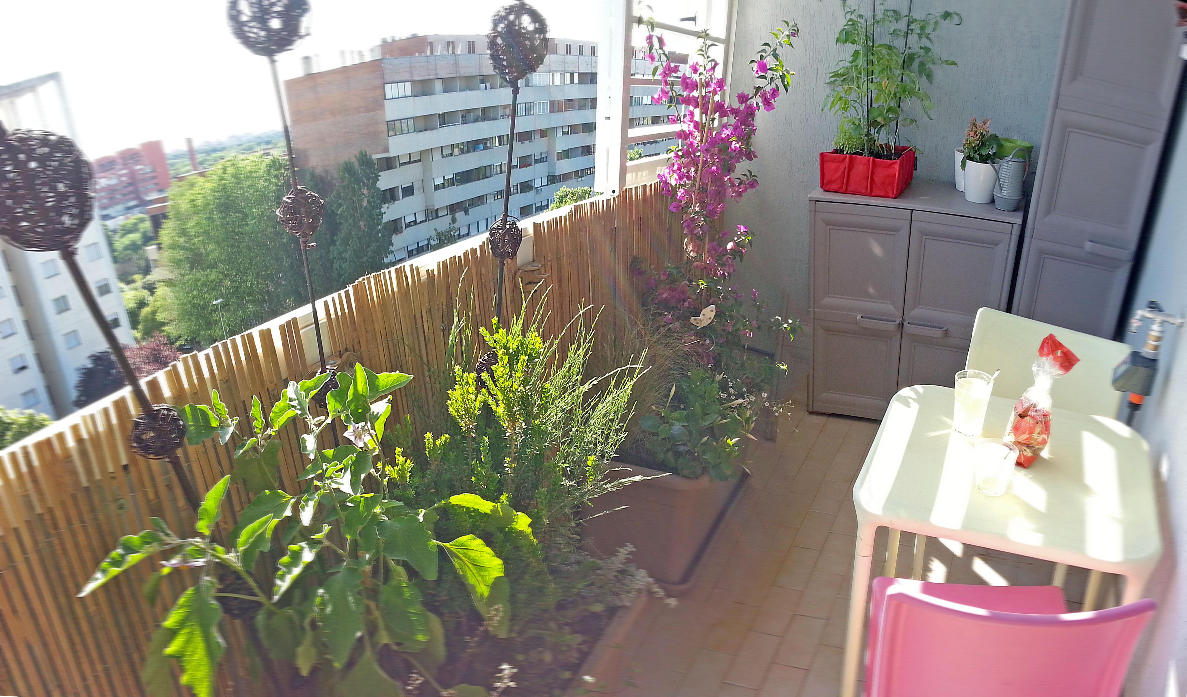 Legno per pareti esterni - Arredare piccolo giardino ...