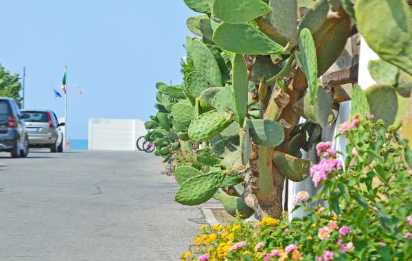 Villa al Mare, nel Villaggio