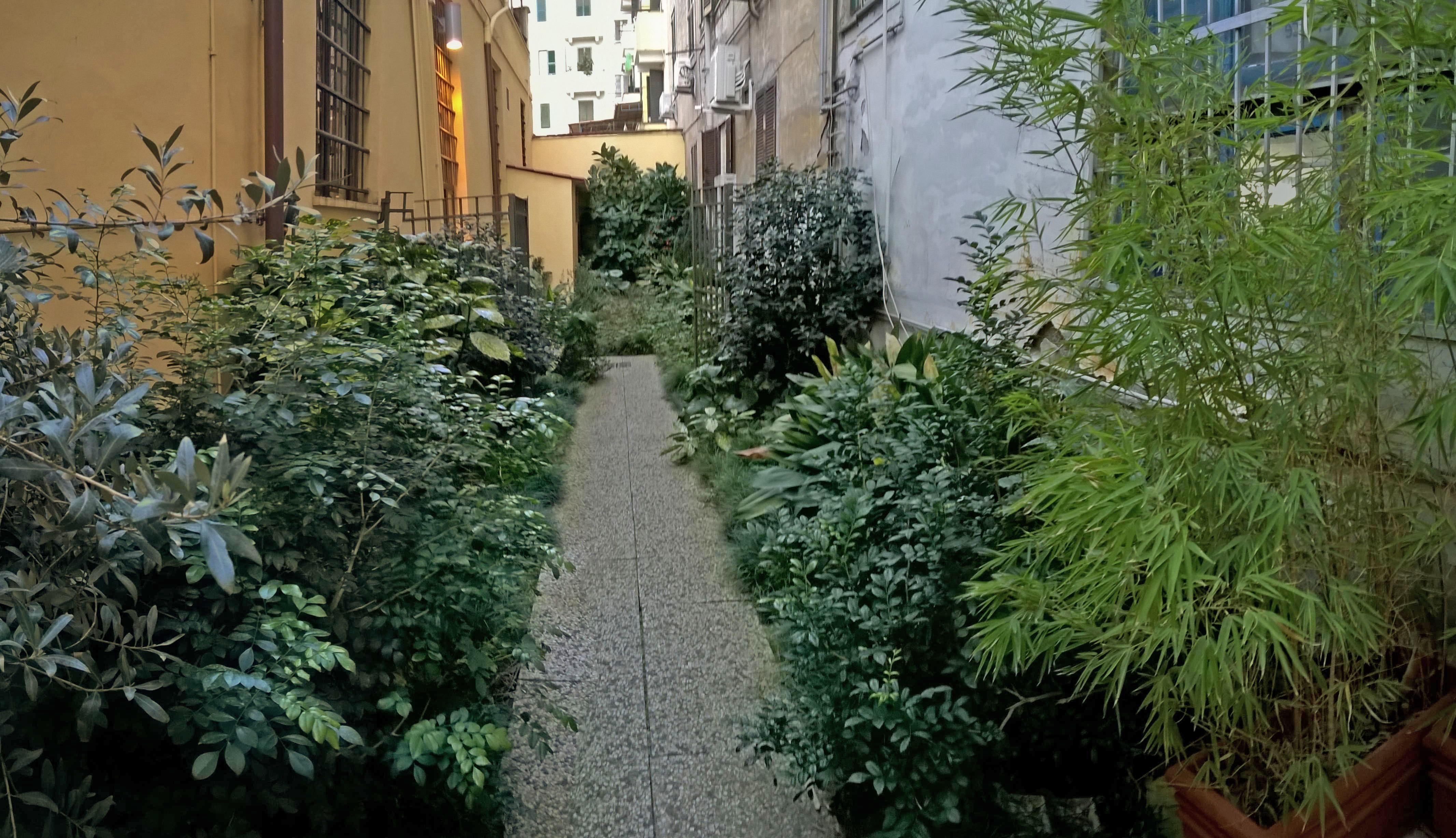 Giardino ombra luminosa idee per interni e mobili - Giardino in ombra ...