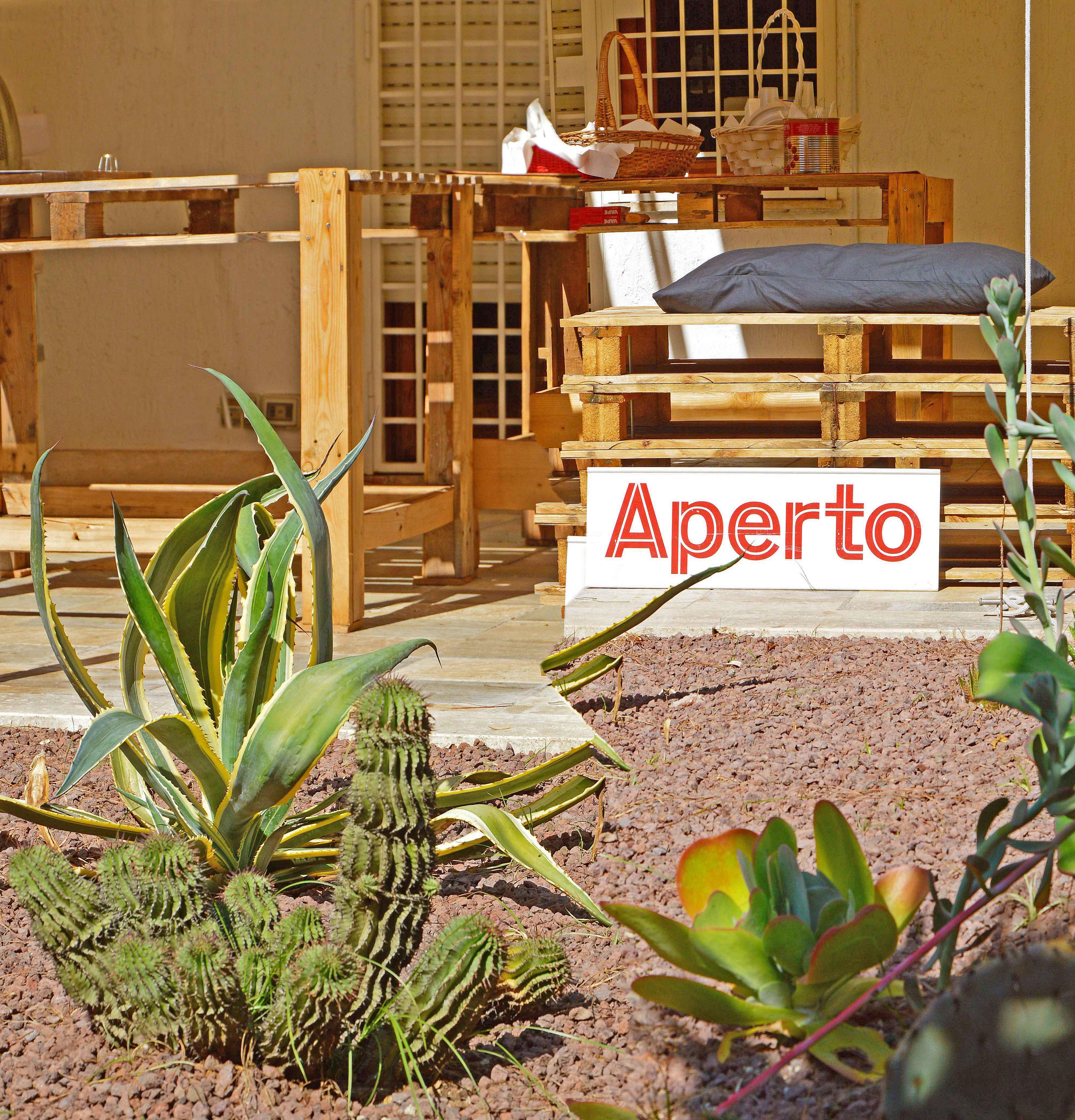 Fantasia di piante grasse isole canarie a roma for Altalena da giardino leroy merlin