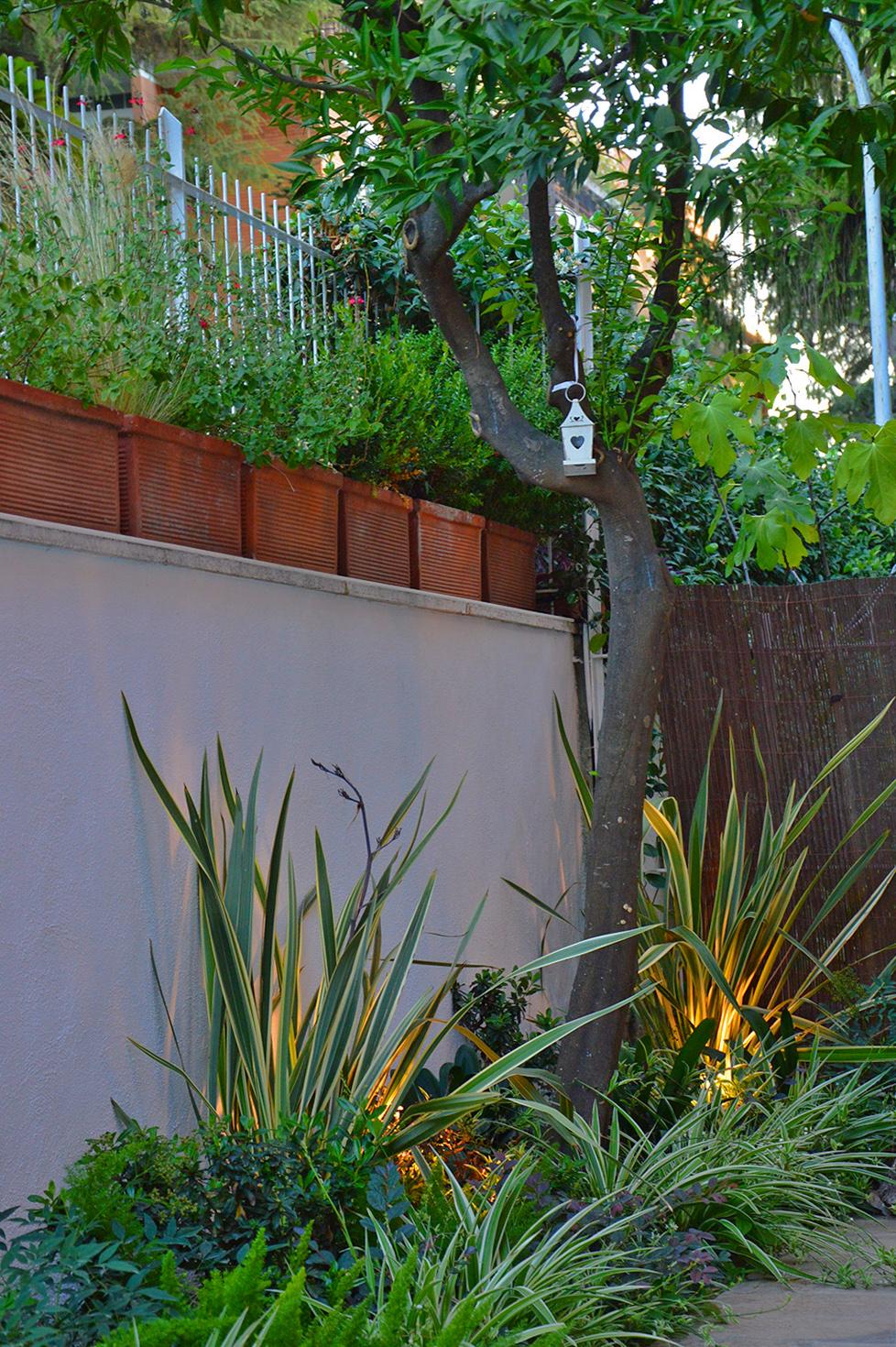 Giardino in ombra lungo un muro fabio masotta - Comporre un giardino ...