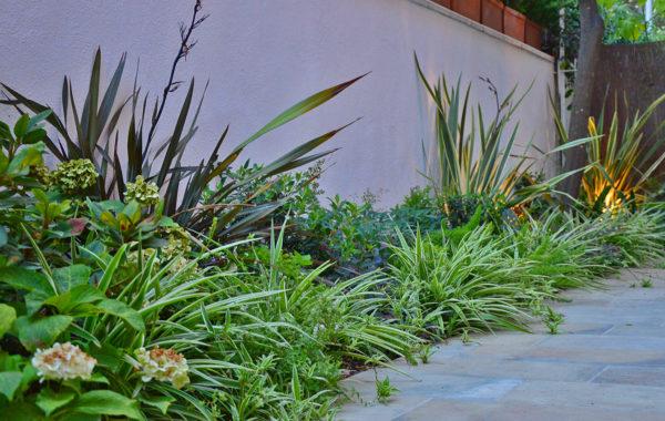 Giardino in ombra lungo un muro