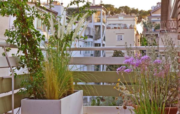Lunghi e Stretti balconi al Sole
